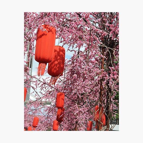 Sun Shine on Red Photographic Print