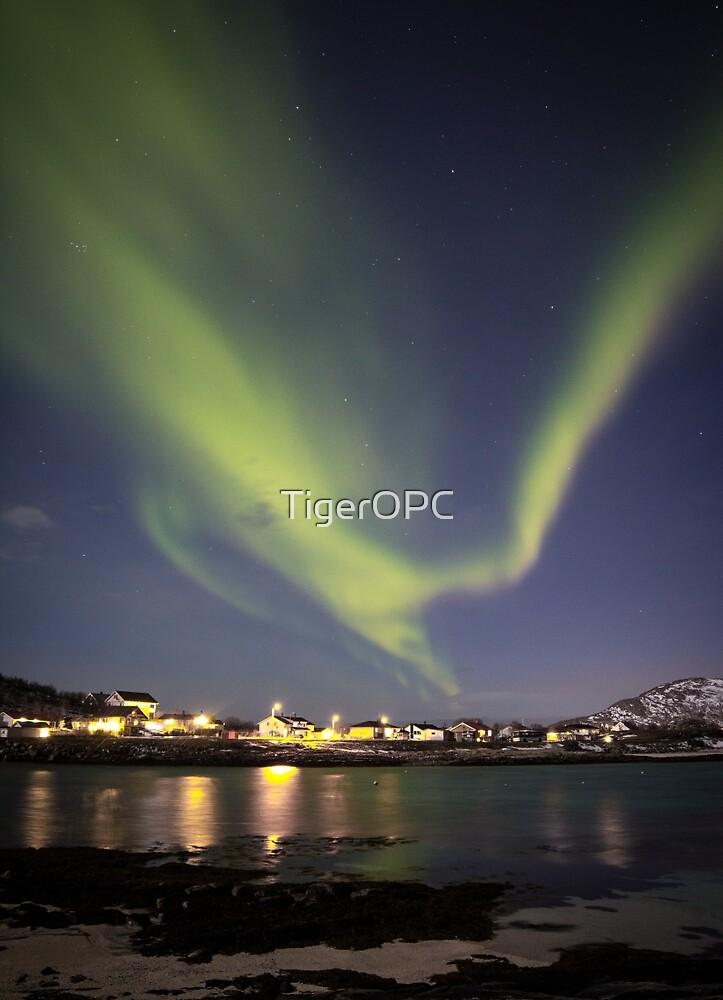 Aurora Borealis XII by TigerOPC