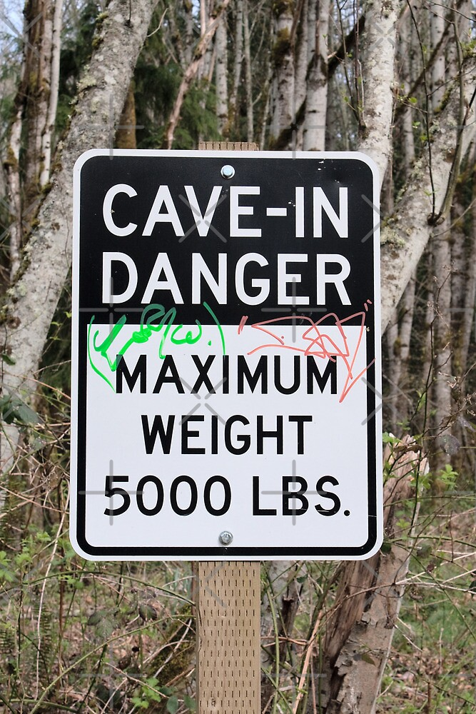 Cave-In Danger Sign by Stacey Lynn Payne