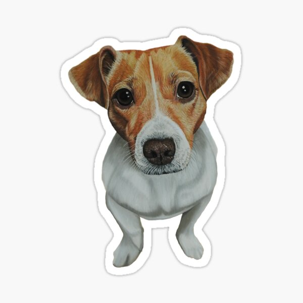 Sky the Jack Russell Terrier Sticker