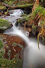 Autumn Cascade by Jim Worrall