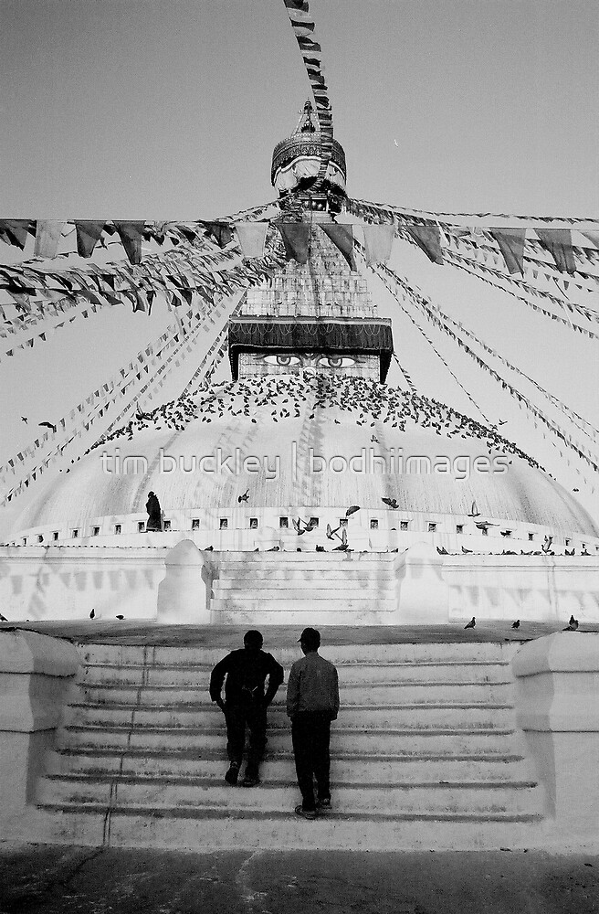 stupa steps. bouddha, nepal by tim buckley | bodhiimages