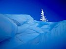 Blue Snow by Sun Dog Montana