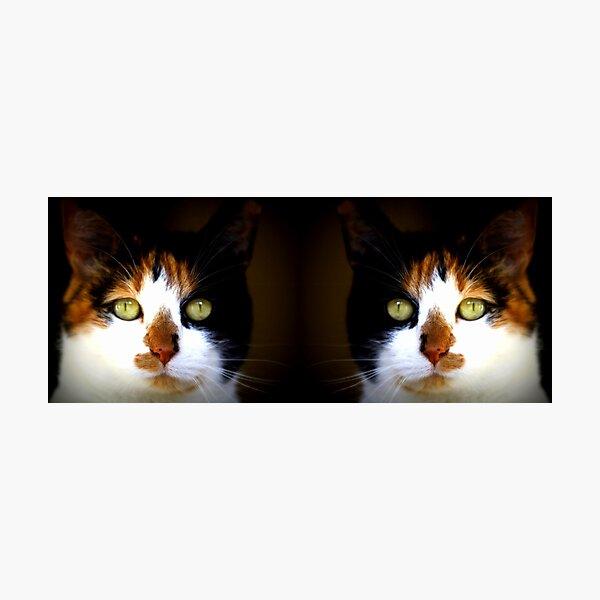 Her mirror image Photographic Print