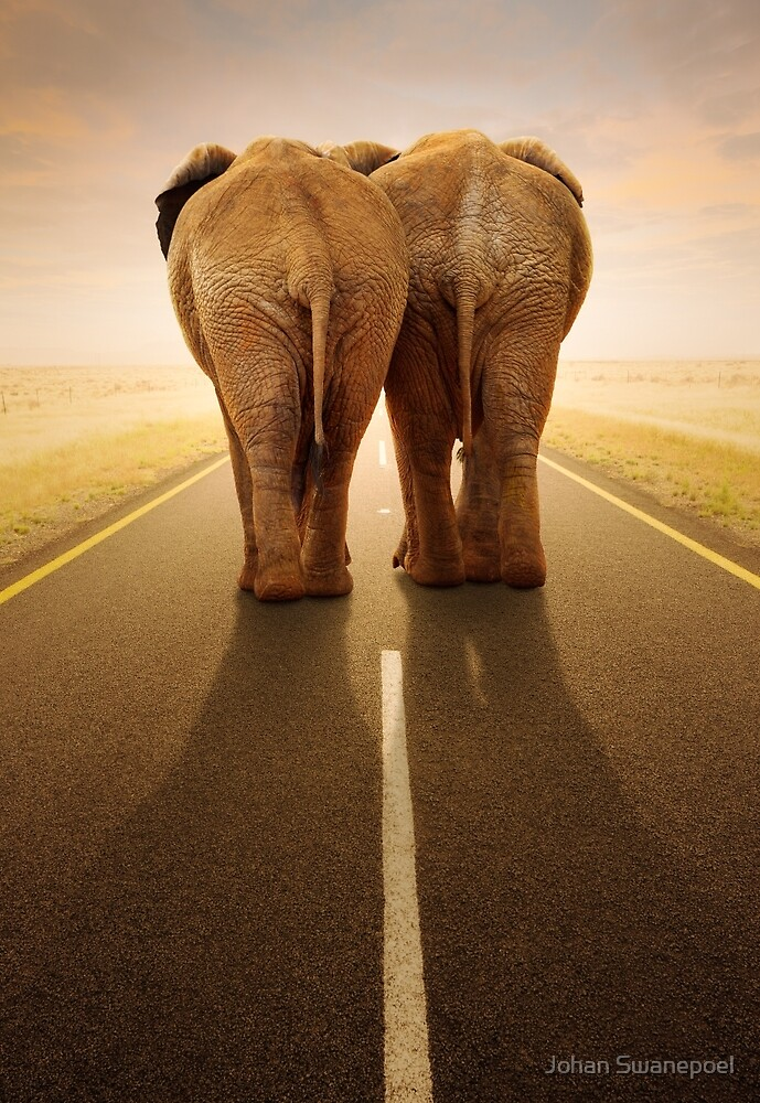 Conceptual - Going away together / travel by road by Johan Swanepoel