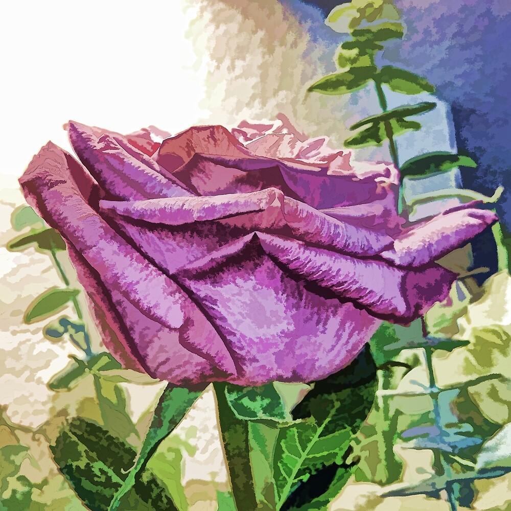 Single Purple Rose by photosbypamela