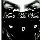 trust no veto by saliziasierra