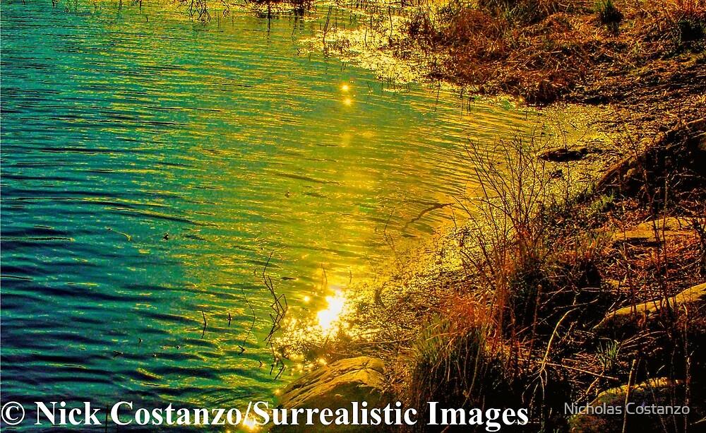 Golden Light by Nicholas Costanzo