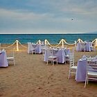Dining on the Beach by Barbara  Brown