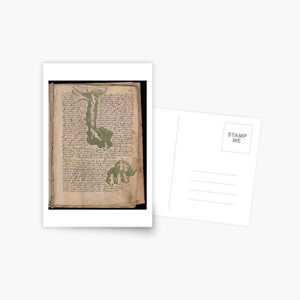 Voynich Manuscript. Illustrated codex hand-written in an unknown writing system Postcard