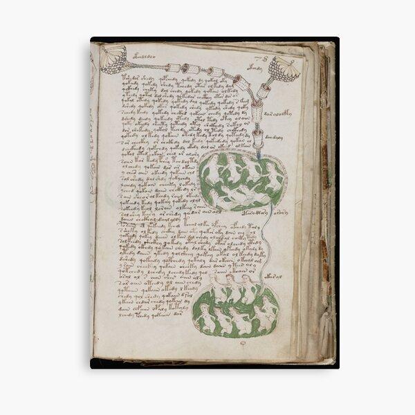 Voynich Manuscript. Illustrated codex hand-written in an unknown writing system Canvas Print
