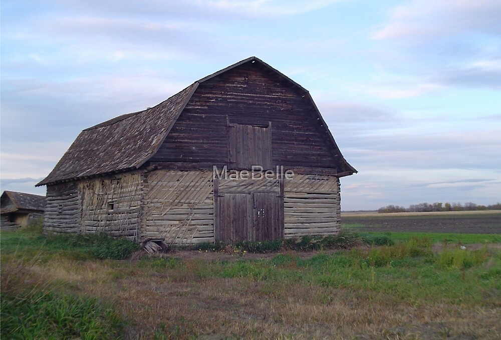 ..Barns on The Landscape...A Dying Era by MaeBelle