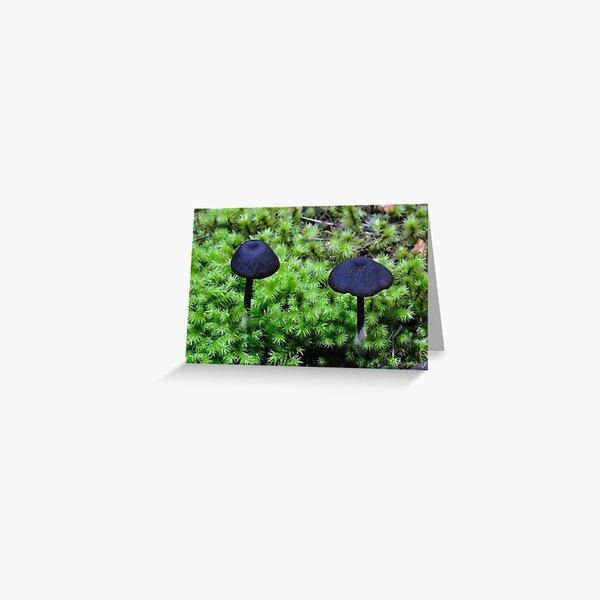 Black Caps Greeting Card