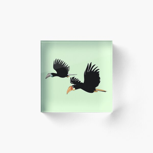 Blyth's hornbill - The Symbol of True Love Acrylic Block