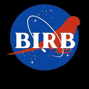 espacio birb - periquito de FandomizedRose