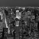 New York Skyline at Night in B&W by oliver9523