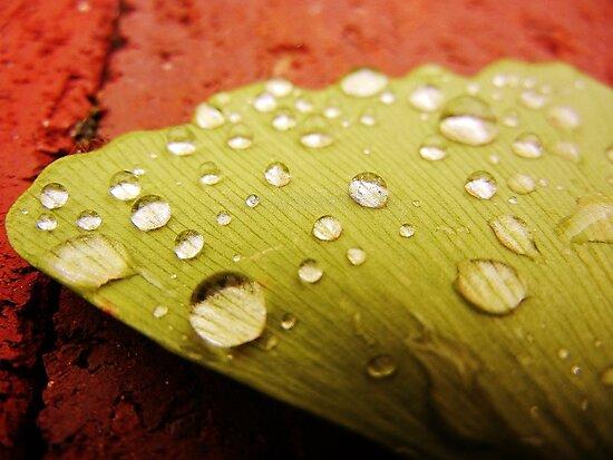 Droplets by MadeleineKyger