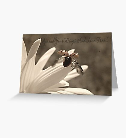Spread Your Wings And Live Free Greeting Card