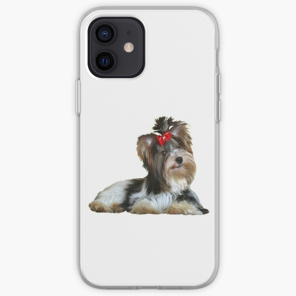 Yorkshire Terrier (Biewer - lying down) iPhone Case & Cover