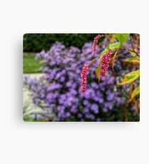 Pink and purple plants Canvas Print