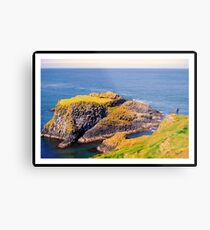 Spectacular glimpse of Carrick Island Metal Print