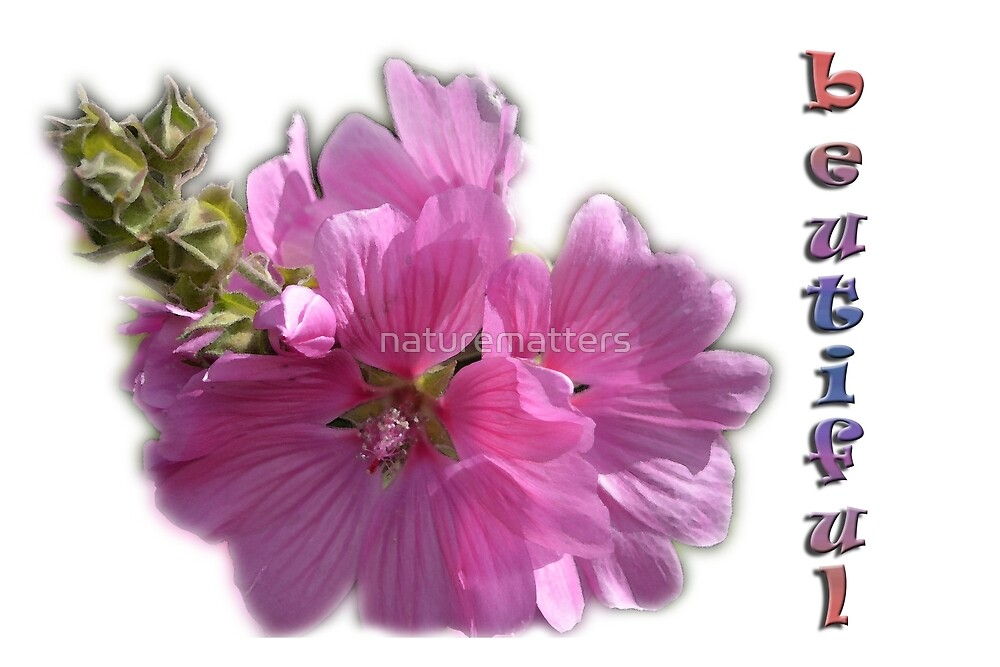 Beautiful summer purple flowers floral photo art. by naturematters