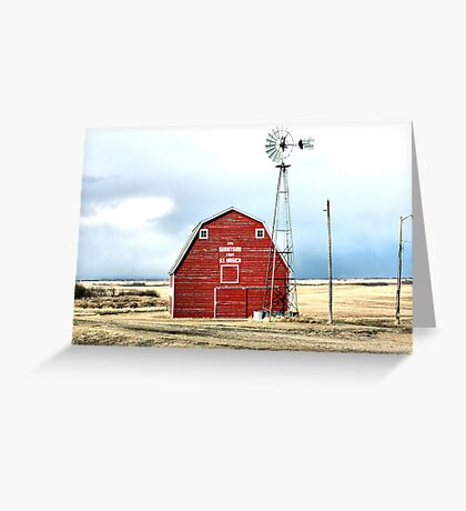 Begged to Be Captured Greeting Card