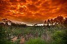 Like an Indian Summer Sunset by Sean Farrow