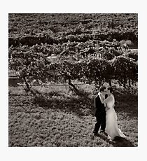 Romance in the Grapevines Photographic Print