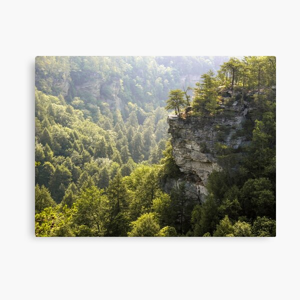 The Cliffs at Fall Creek Falls Canvas Print