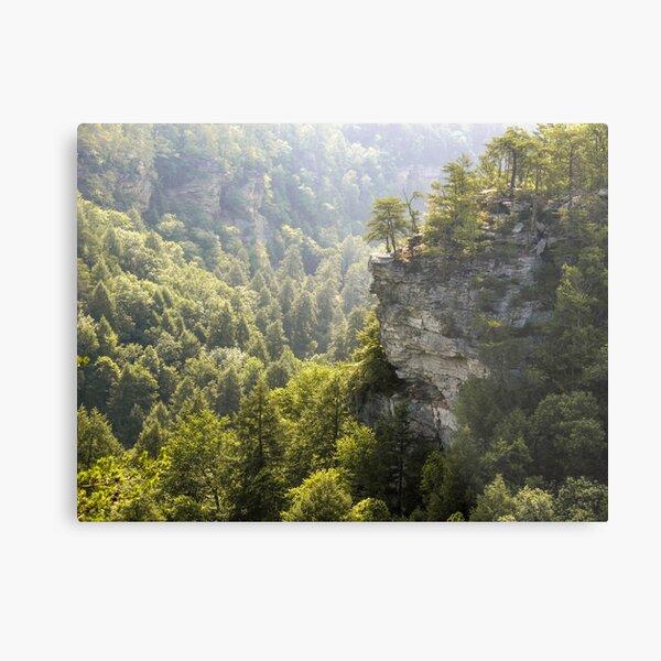 The Cliffs at Fall Creek Falls Metal Print