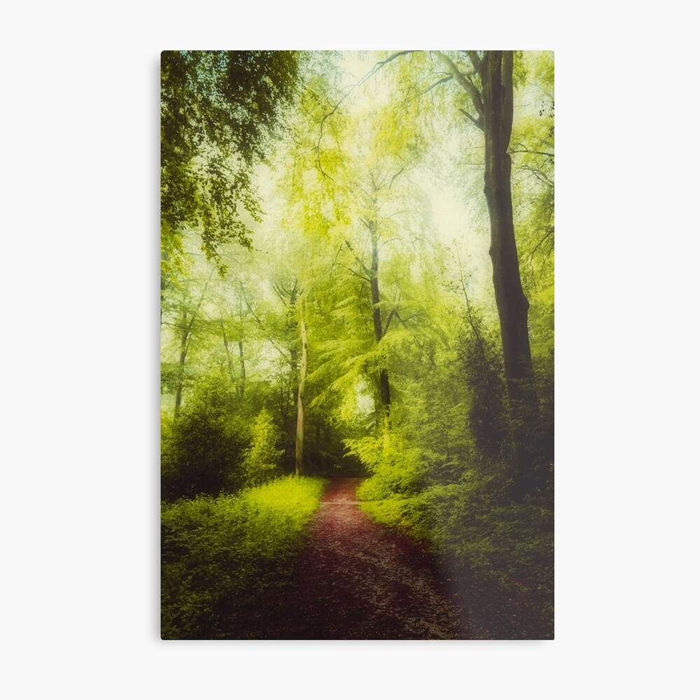 red forest walk Metal Print