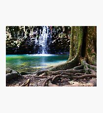 Hawaiian Falls, Maui Photographic Print