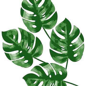 Monstera - Swiss Cheese by MyArt23