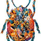 Beetle in a Jar by jackson abrams