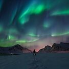 Northern Light by Patrice Mestari