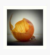 Onion skin  Art Print