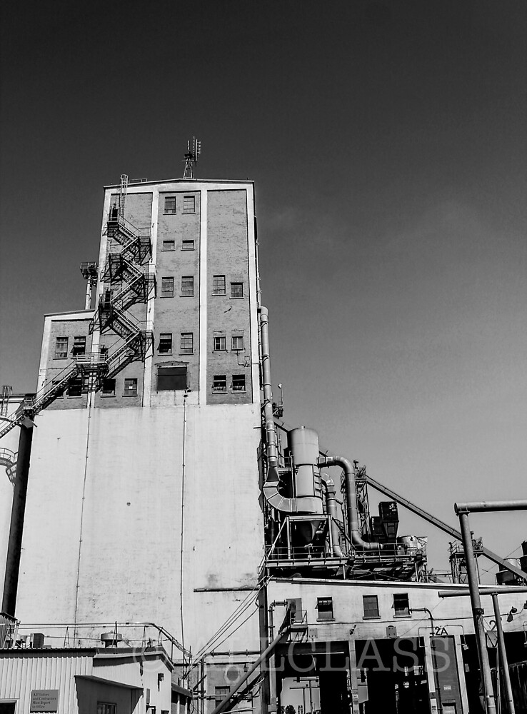 Alberta Grain Terminal by AllClass