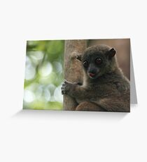 blowing a raspberry Greeting Card