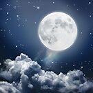 Vollmondnacht in Blau von Eva Nev