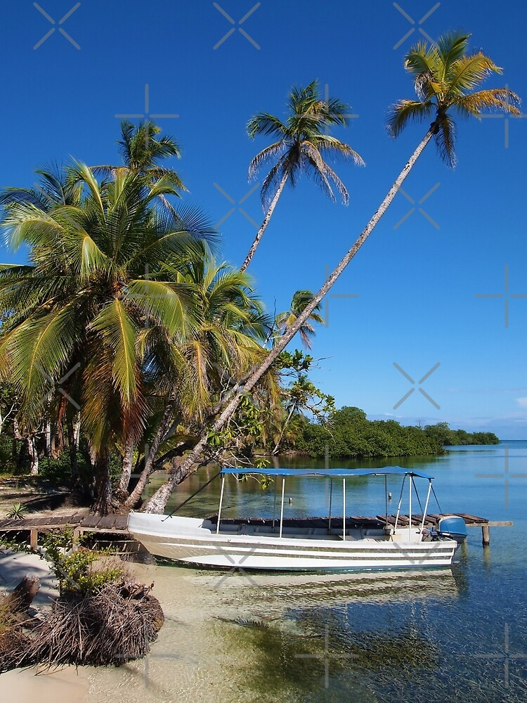 Boat at dock on tropical shore and coconut trees by Dam - www.seaphotoart.com