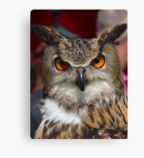 The Eurasian Eagle-owl Canvas Print