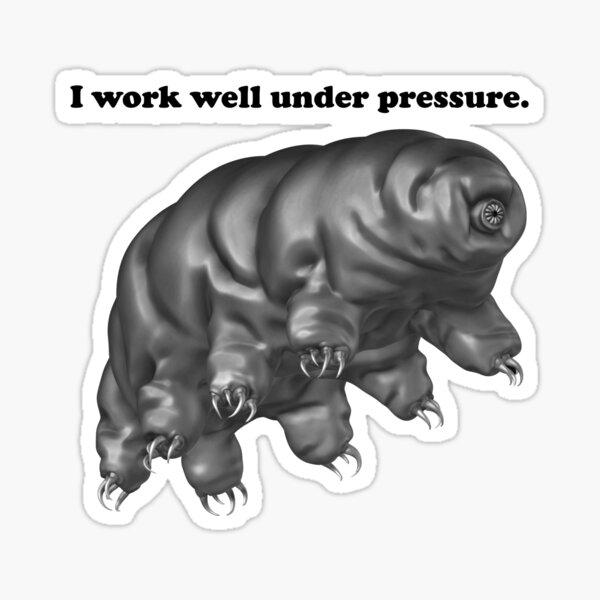 Tardigrade Pun Sticker