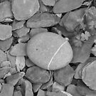 Pebbles by Char281189