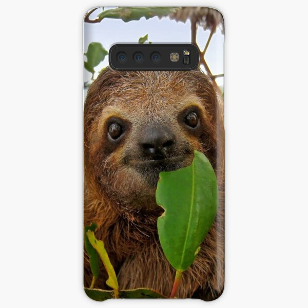 Baby Brown throated Three toed sloth Samsung Galaxy Snap Case