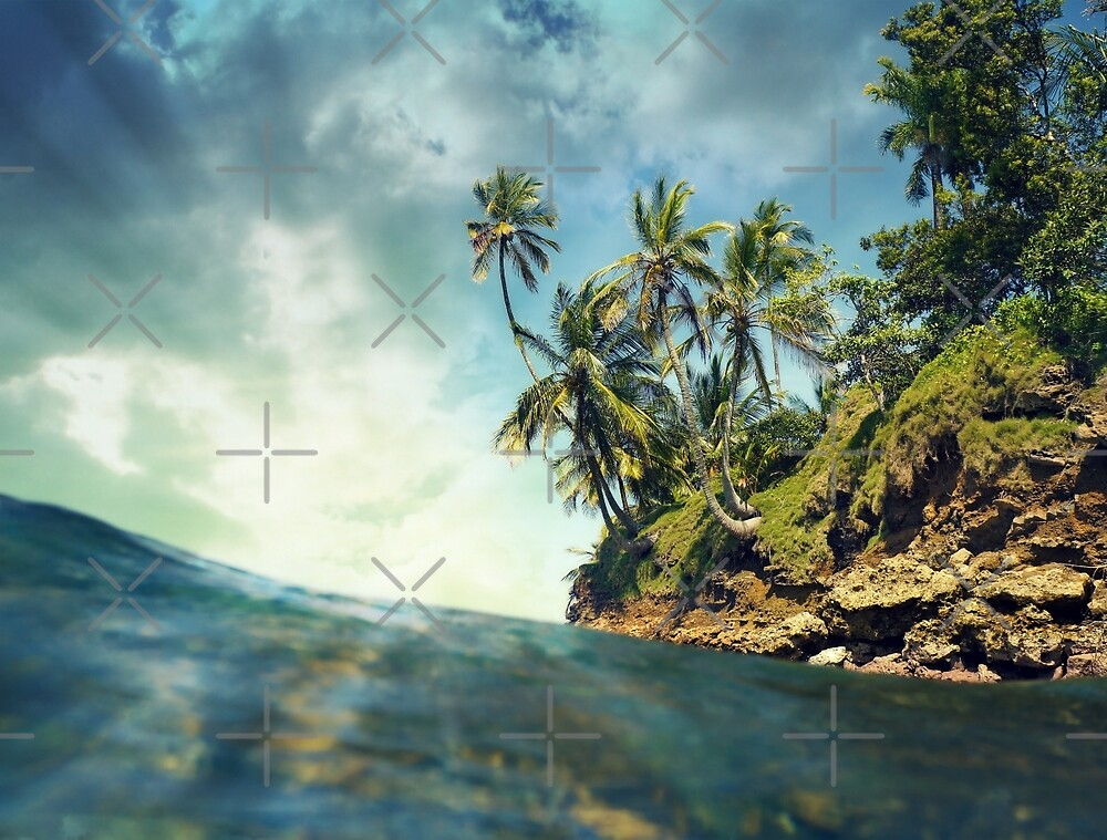 Coconut trees with sunlight viewed from sea surface by Dam - www.seaphotoart.com