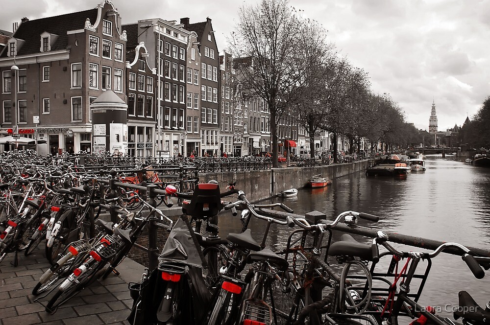 Bikes along a canal in Amsterdam by Laura Cooper