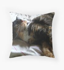 I`m Trained to Kill I tell you Throw Pillow