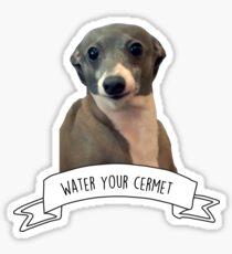 Kermit - gieße dein Cermet Sticker
