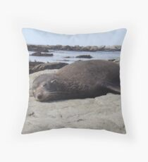 Sleeping Nz Fur Seal Throw Pillow
